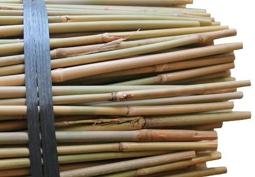 3ft Thin Bamboo Canes X 500 6 8lbs