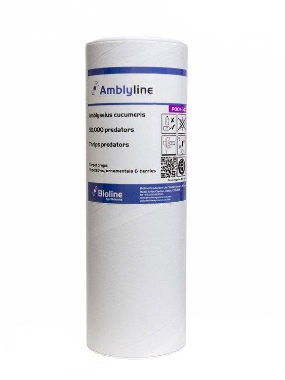 Amblyline CU (Amblyseius cucumeris) Organic Thrips Pest Control